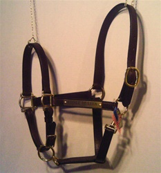 Stable halter 1""