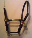 "Stable Halter 3/4"" with FREE nameplate"